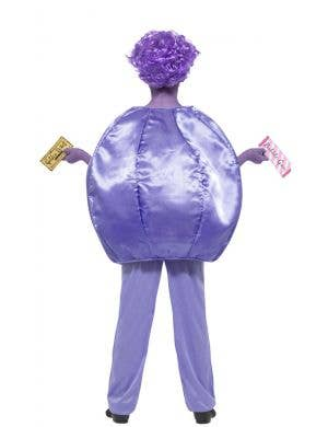 Violet Beauregarde Blueberry Girls Book Week Costume