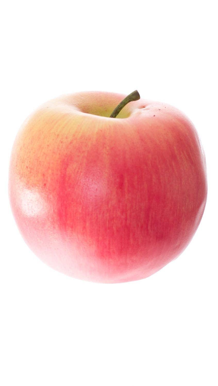 Apple Fake