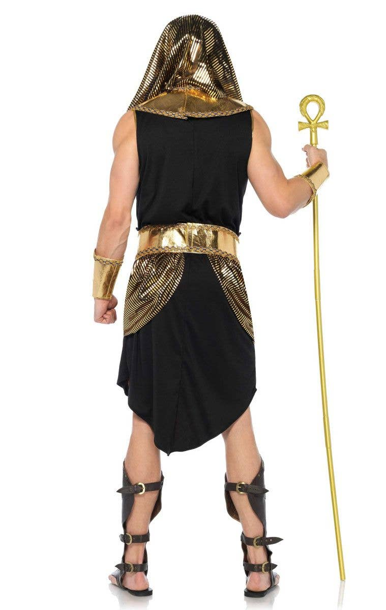 ... Deluxe Menu0027s Ancient Egyptian Costume Back Image  sc 1 st  Heaven Costumes & Menu0027s Ancient Egyptian Costume | Deluxe Menu0027s Pharaoh Costume