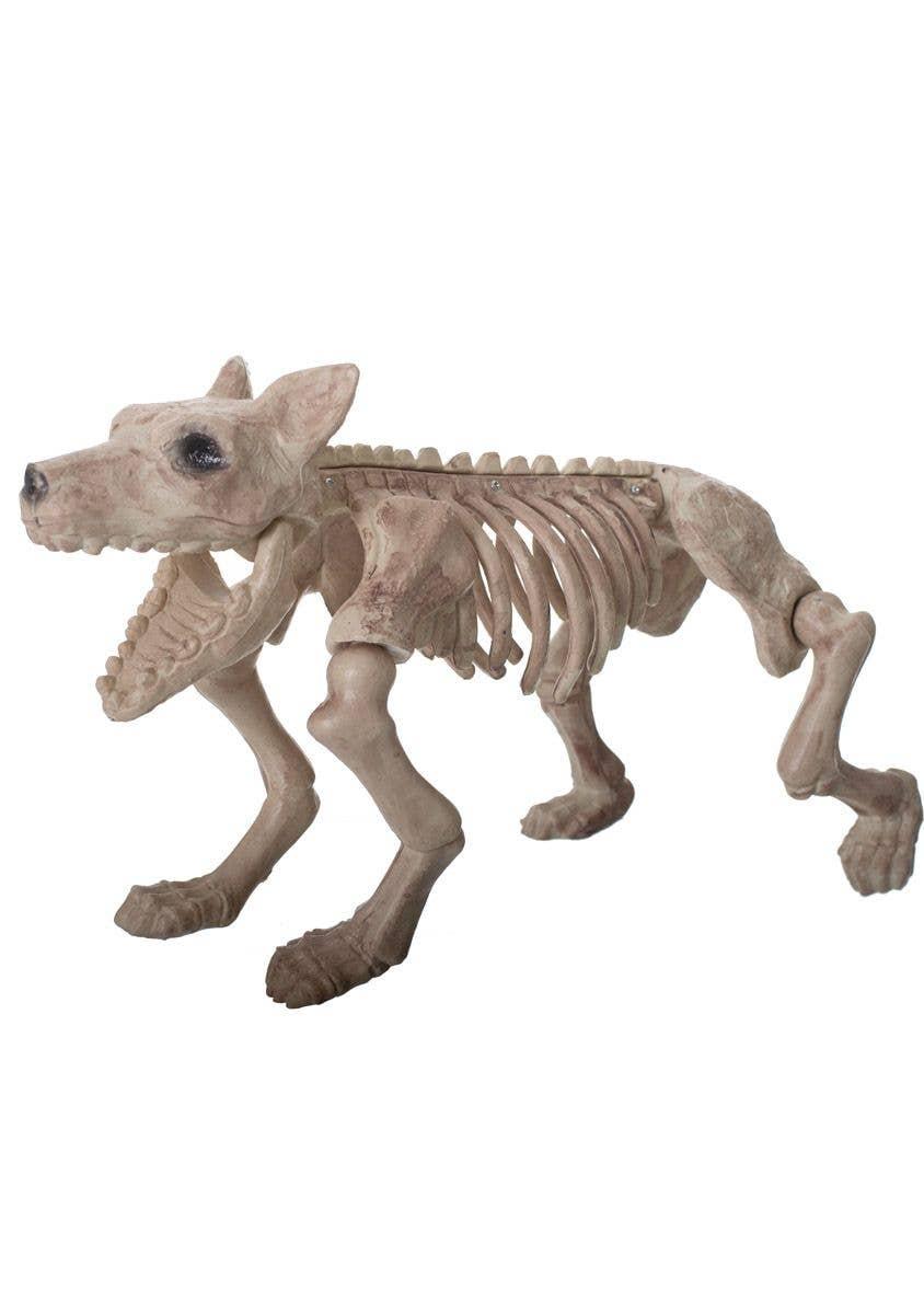 Largel Dog Skeleton Halloween Prop Dog Skeleton Halloween Decoration