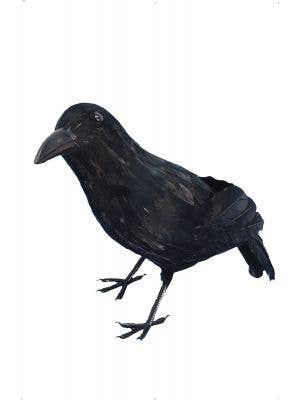 Black Crow Halloween Horror Party Decoration