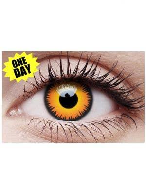 Orange Werewolf Single Wear Crazy Contact Lenses