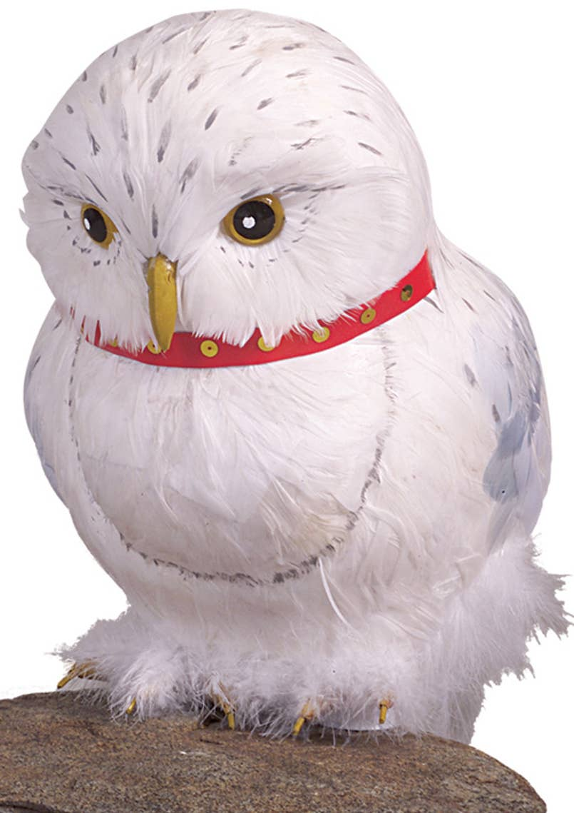 Hedwig the Owl Harry Potter Book Week Costume Accessory